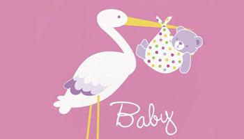 Rosa Storch für die Baby Shower