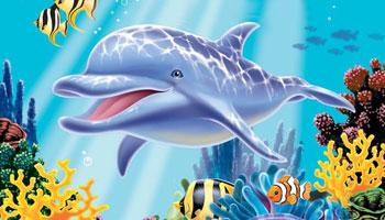 Delfin-Kindergeburtstag