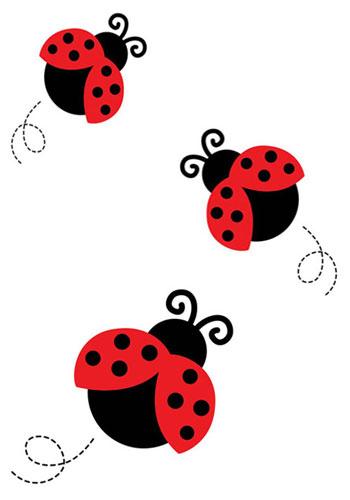 Drei kleine Marienkäfer